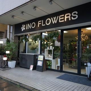 INO FLOWERS